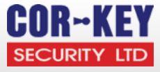 Security in Celbridge